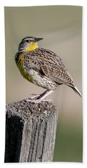 Western Meadowlark Bath Towel