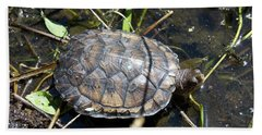Western Pond Turtle, Actinemys Marmorata Hand Towel