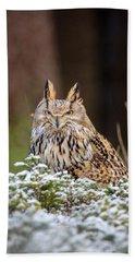 Western Siberian Owl Hand Towel