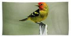 Western Tanager At The Ranch Bath Towel