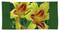 Wet And Wild Daylily Duo Hand Towel