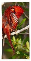 Wet Cardinal Hand Towel