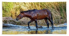 Wet Wild Horse Walking In Salt River Bath Towel