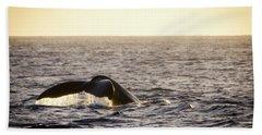 Whale Fluke Hand Towel