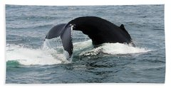 Whale Of A Tail Hand Towel