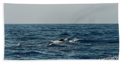 Bath Towel featuring the photograph Whale Watching And Dolphins 3 by Enrico Pelos