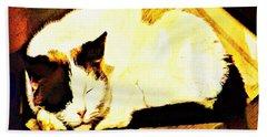 What Do Cats Dream Of Bath Towel