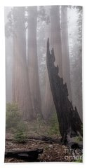 Bath Towel featuring the photograph What Lurks In The Forest by Peggy Hughes