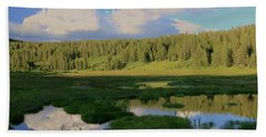 Hand Towel featuring the photograph What's Left Of A Lake by Sean Sarsfield