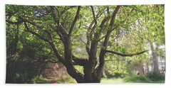 When You Need Shelter Hand Towel by Laurie Search