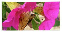 Whirl-about Skipper Butterfly Hand Towel by Donna Brown