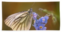 Hand Towel featuring the photograph White And Creamy Butterfly On Forget Me Not Flower by Jaroslaw Blaminsky