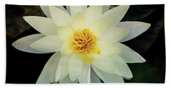 White And Yellow Water Lily Bath Towel
