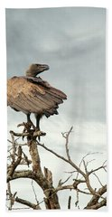 White-backed Vulture Perched On Tree Branch Hand Towel