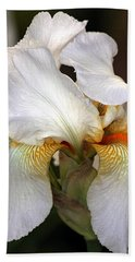 Hand Towel featuring the photograph White Bearded Iris by Sheila Brown