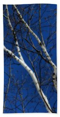 White Birch Blue Sky Hand Towel by Smilin Eyes  Treasures