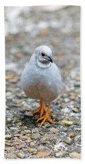 White Bird Sneaking Through Hand Towel