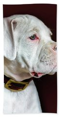 White Boxer Portrait Bath Towel