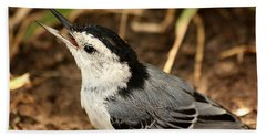 White Breasted Nuthatch 2 Bath Towel by Sheila Brown