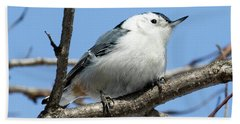 Bath Towel featuring the photograph White-breasted Nuthatch Perched by Ricky L Jones