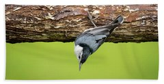 Hand Towel featuring the photograph White-breasted Nuthatches by Ricky L Jones
