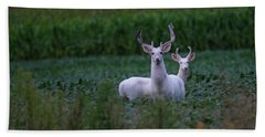 White Bucks Hand Towel