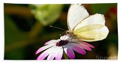 White Butterfly Hand Towel