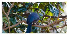 Hand Towel featuring the photograph White-cheeked Turaco by Donna Brown