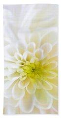 White Chrysanthemum Hand Towel by Cynthia Decker