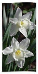 White Daffodils #2 Hand Towel