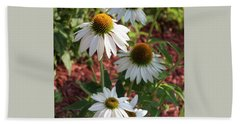 Bath Towel featuring the photograph White Echinacea In Pastel by Suzanne Gaff