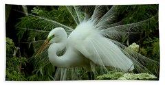 White Egret Displaying Hand Towel