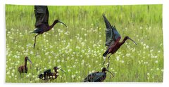 White-faced Ibis Rising, No. 1 Bath Towel