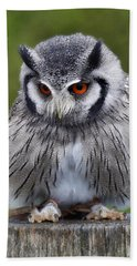 White Faced Owl Bath Towel