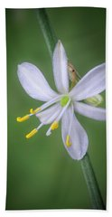 Hand Towel featuring the photograph White Flower by Lynn Geoffroy