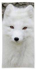 White Fox Hand Towel