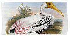 White-headed Ibis, Tantalus Leucocephalus Hand Towel