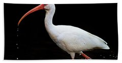 White Ibis Dripping Bath Towel
