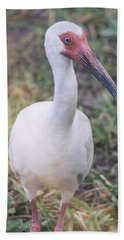 White Ibis In The Morning Light  Hand Towel
