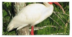 White Ibis Hand Towel