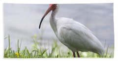 White Ibis  Hand Towel