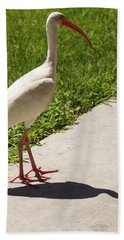 White Ibis Walking Down The Street Bath Towel