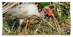 White Ibis With Crayfish Bath Towel