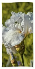 Hand Towel featuring the photograph White Iris June 2016.  by Leif Sohlman