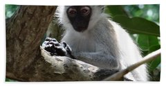 White Monkey In A Tree 4 Hand Towel