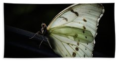 White Morpho In The Moonlight Bath Towel