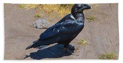 White-necked Raven Of Kilimanjaro Hand Towel by Jeff at JSJ Photography