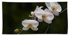 White Orchids Hand Towel