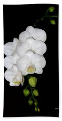 White Orchids On Black Hand Towel