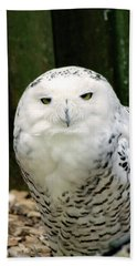 White Owl Bath Towel
